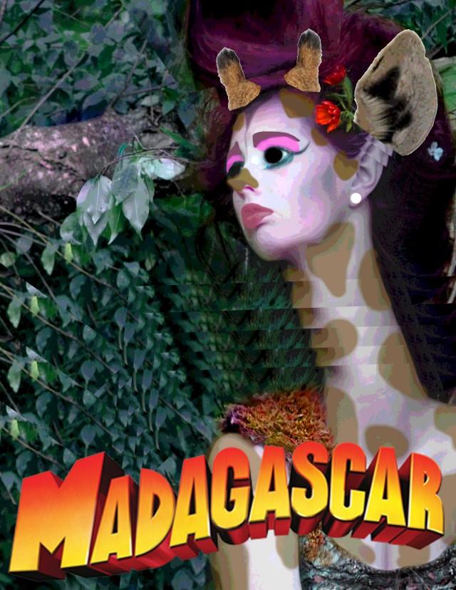 Madigascar1